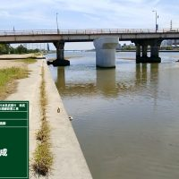 武庫川 南武橋P2・P3橋脚設置工事